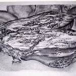 """Eggplant"" by andrewakufo"