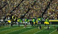 Oregon Ducks Flags