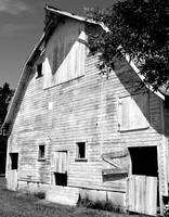 Barn Black & White