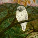 """Barred Owl"" by FTMcKinstry"