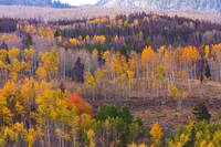 Rocky Mountains Autumn View