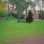 """""""8Vondel Park"""" by PriscillaTurner"""
