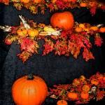 """Pumpkin Layers"" by jbjoani2"