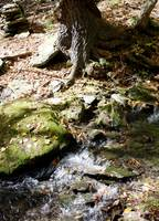 Mossy Rocks and Stream