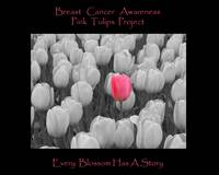 Breast Cancer Awareness Pink Tulip Project