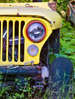 Yellow Jeep Right 18x24 Print