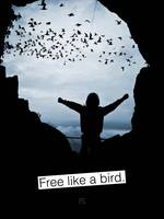 Quote: Free like a bird