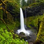 """""""Silver Falls"""
