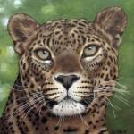 """Leopard"" by KariTirrell"