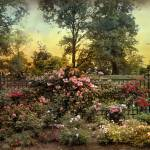 """Rose Garden Trellis"" by JessicaJenney"
