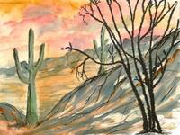 arizona evening southwestern landscape