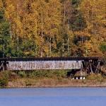 """""""Autumn Train Trestle"""" by soulenergy"""
