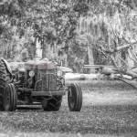 """Massy Fergason Tractor"" by Hansen"