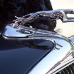 """Ford Greyhound Hood Emblem"" by TheUrbanMethod"
