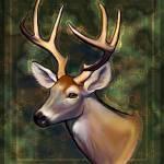 """Portrait of a Deer"" by BlueHobbit"