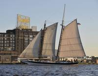 Pungy Schooner Lady Maryland Sails Past Domino Sug