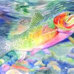 """Rainbow Trout"" by saraalexandermunoz"