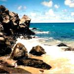 """Beach at the Ritz Carlton, Maui Hawaii"" by sharonblanchard"