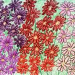 """Field of Daisies"" by jmeraz"