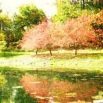 """""""Fall foliage"""" by NatalieRobinson"""