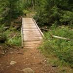 """Bridge over stream"" by NatalieRobinson"