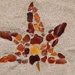 """Sea Glass Fall Leaf"" by maryostudio"