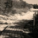 """""""Trail 2"""" by eflynn"""