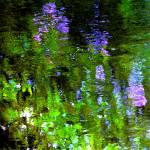 """""""Giverny VII"""" by Woodsman"""