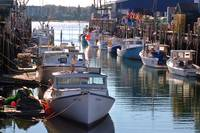 Maine Lobster Boats in Port