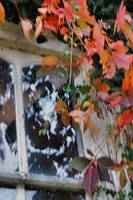 Carriage house in Autumn