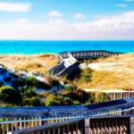 """Destin Boardwalk over the Dunes"" by Cynthia_Burkhardt"