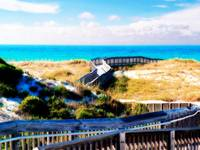 Destin Boardwalk over the Dunes