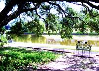 Downtown Natchitoches Cane River Lake bench 05