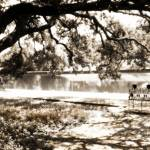 """Downtown Natchitoches Cane River sepia 07"" by Cynthia_Burkhardt"