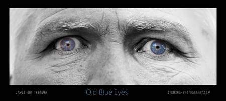 Old Blue Eyes Poster