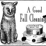 """A Good Fall Cleaning"" by artfolio"