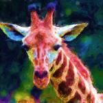 """Giraffe Goof"" by marilynsholin"