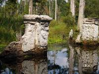 South Carolina Cypress Gardens Ruins Photo by Gine