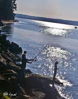 Sunbeam Fishing