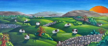 Burren Sheep