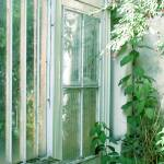 """Greenhouse Door"" by colleenflynn"