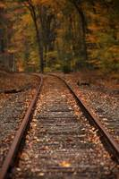 Tracks into Fall