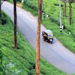 """In munnar you will get to see only green !"" by AgniMax"