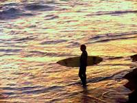 Sunset Surfer in Pacific Ocean 2