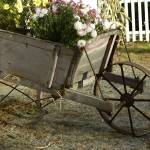 """The Flower Cart"" by kml"