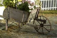 The Flower Cart