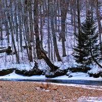 """Winter Streams"" by Darlene King"