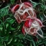 """ik-Fuchsia2F1.1"" by lovenkraft"