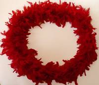 Red Feather Circle Frame