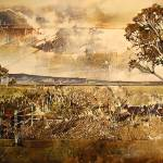 """""Bloekom"" Eucalyptus globulus"" by BrianRolfeArt"